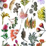 Australian Nature Collage – The Sequel