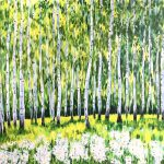 Birches and daisies
