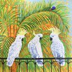 Cockatoos and rainbow lorikeet
