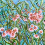 Pretty In Pink – Flowering Coral Gum