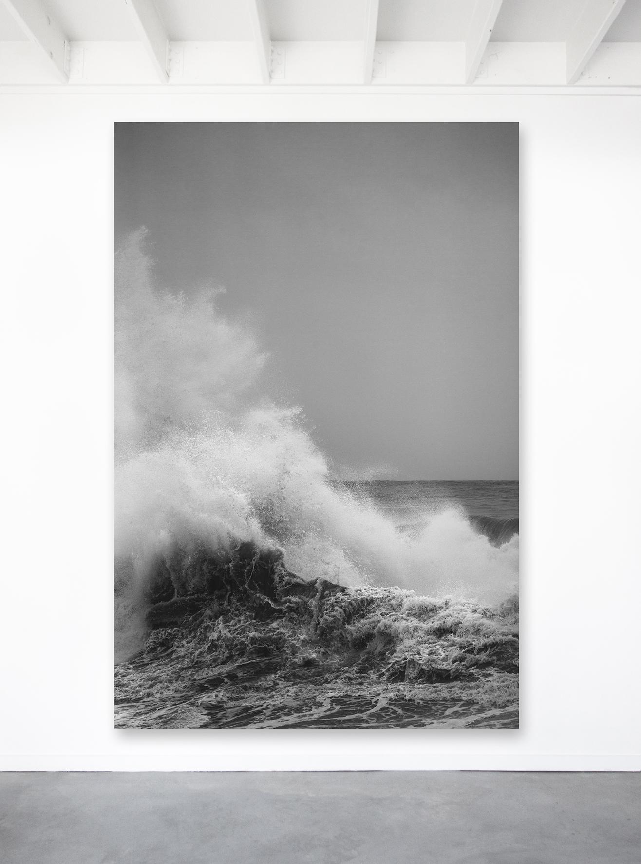Oceanic (c) Shell Bankier Bluesphere.photography For Art Lovers