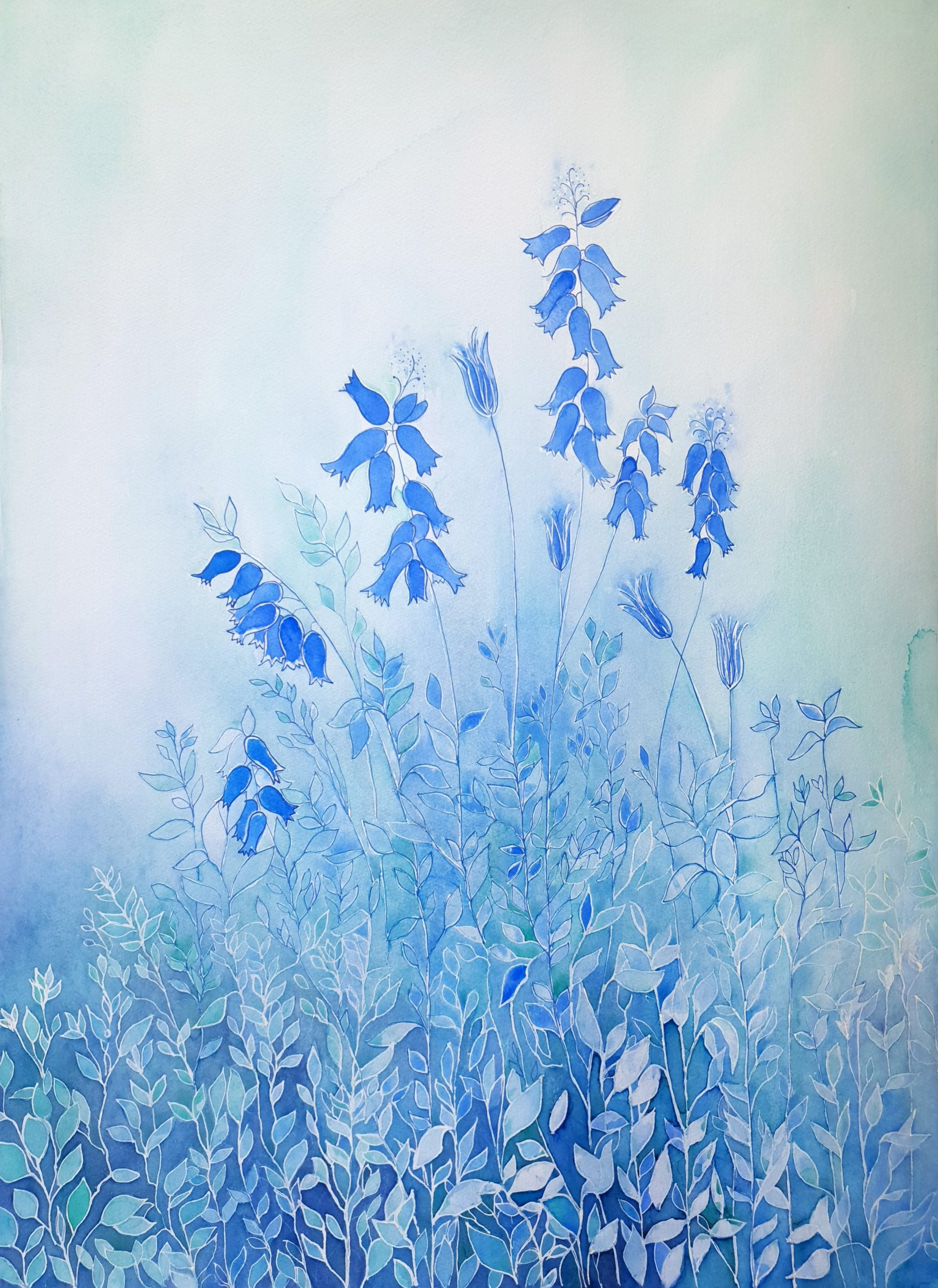The Beauty Of Bluebells Lucinda Leveille