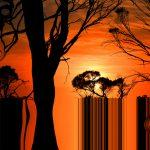 Digital TerraFirming Ltd Ed Print