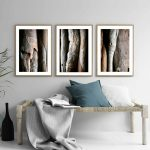 Tree Bark Triptych Ltd Ed Print