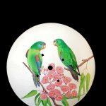 Plough disc with Swift Parrots