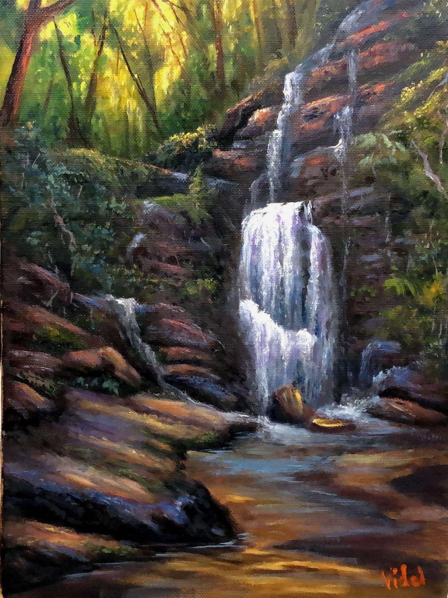 2021p20 Hidden Waterfall In Blue Mountains 2b