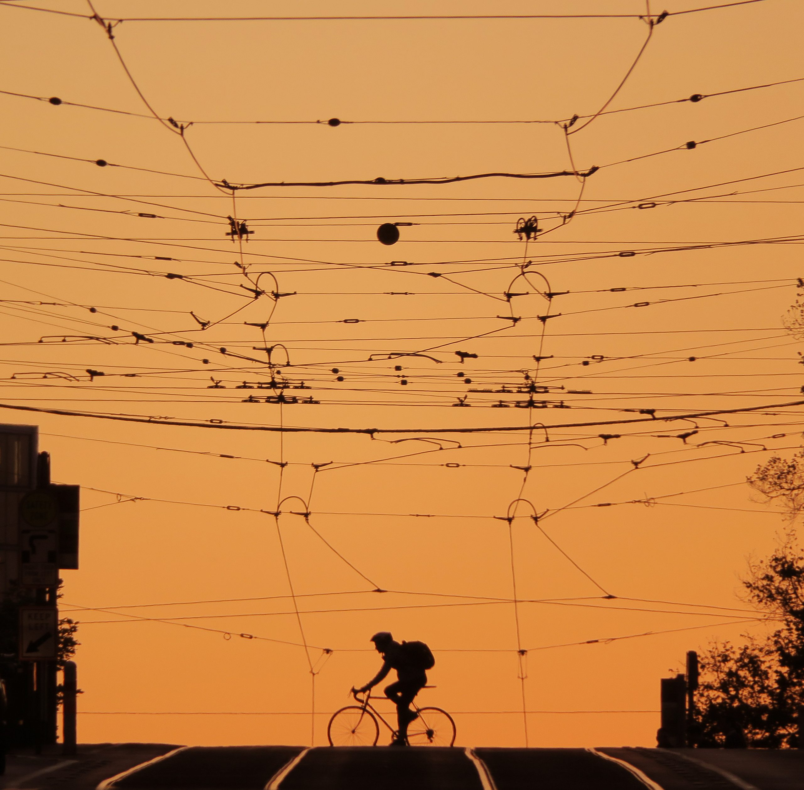 Cyclist Latrobe 2