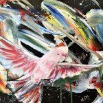 Capturing Freedom – Pink Cockatoo