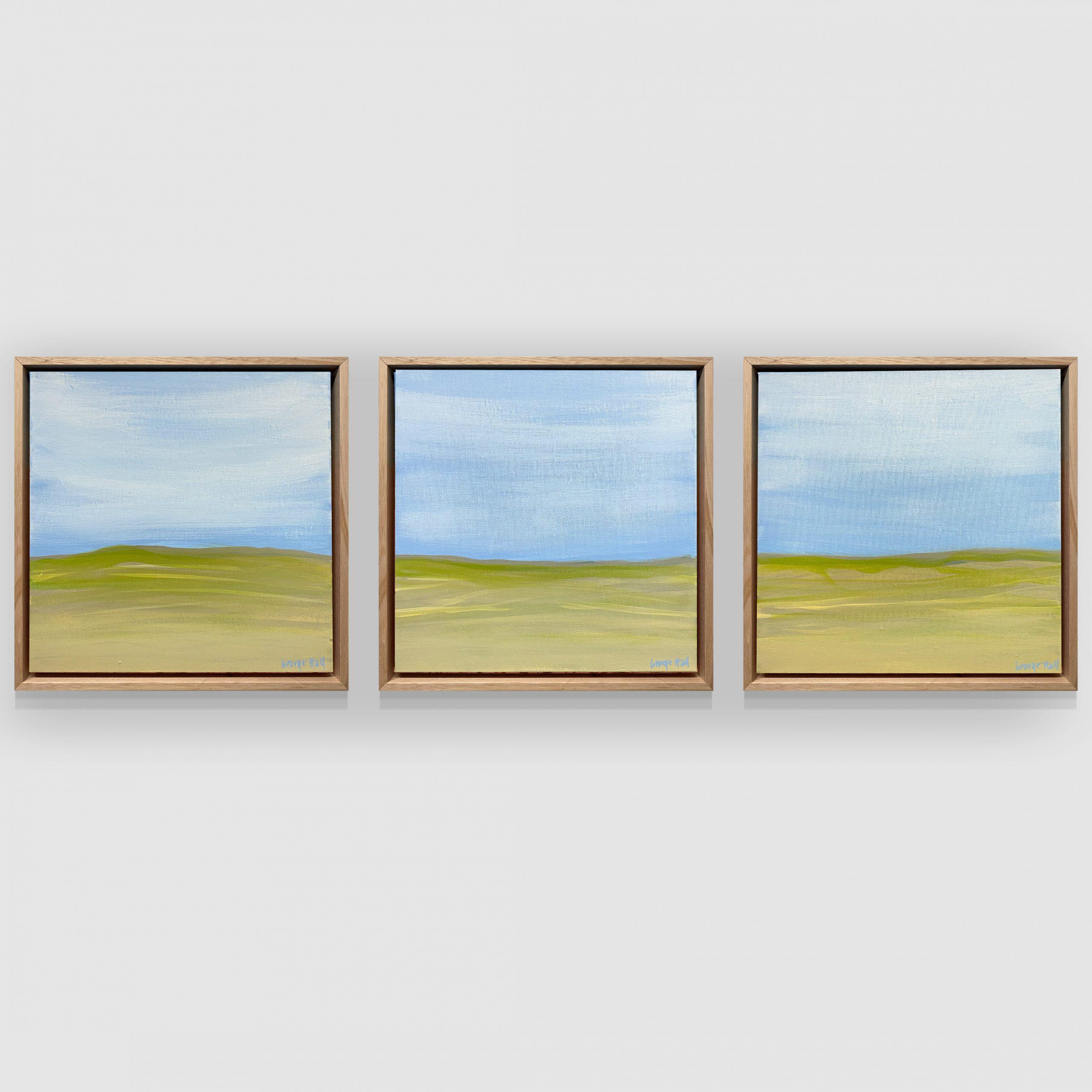 George Hall Art Sand Dunes Hung 2 Copy