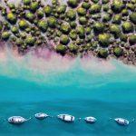 I`ve got all my ducks in a row (Aerial beach ocean landscape)
