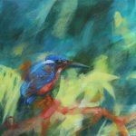 Kingfisher – Paused