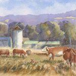 Milton Pastures