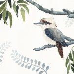Kookaburra hanging in the Gums