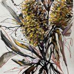 Banksias 2