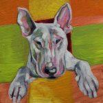 The Bull Terror (Study) English Bull Terrier