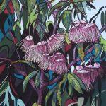 Eucalyptus Synandra