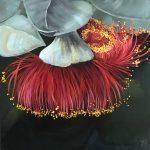 Blooming Rose Mallee