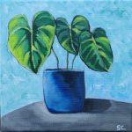 Little plant II