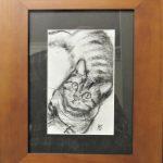 Tabby kitten charcoal drawing