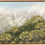 Lyrebird Track
