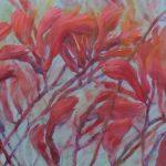 Kangaroo Paw – Australian Native Flower Series