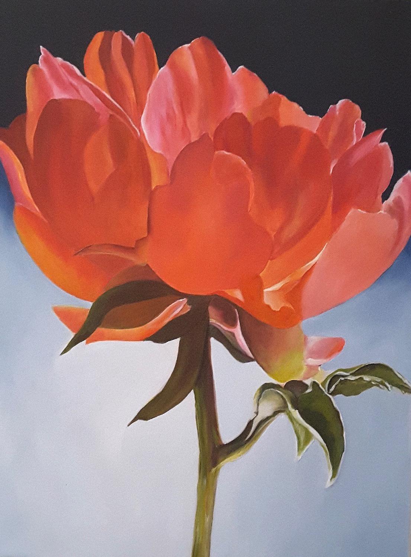 Meron Somers Peony Blossom 76x102x4