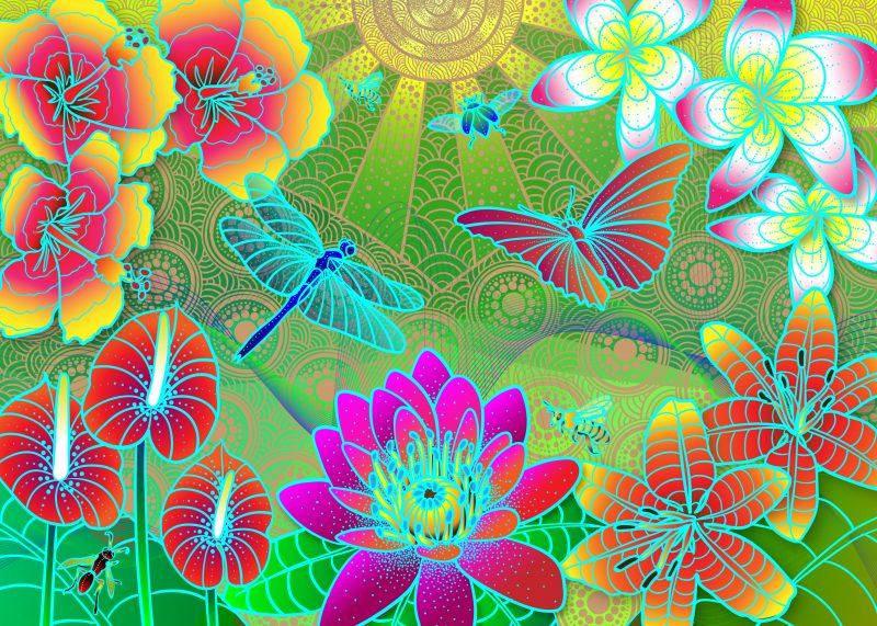 Spiritofnature Beautyindiversity 800x571