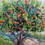 Suburban Orange Tree