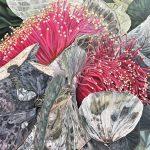 Toast Loves – Eucalyptus Macrocarpa