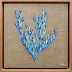 Blue Coral 2