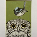 Annoyed Owl with Cheeky Blue Wren