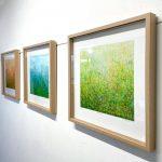 Garden Series – Set of 3 – 52.5cm Natural Frame