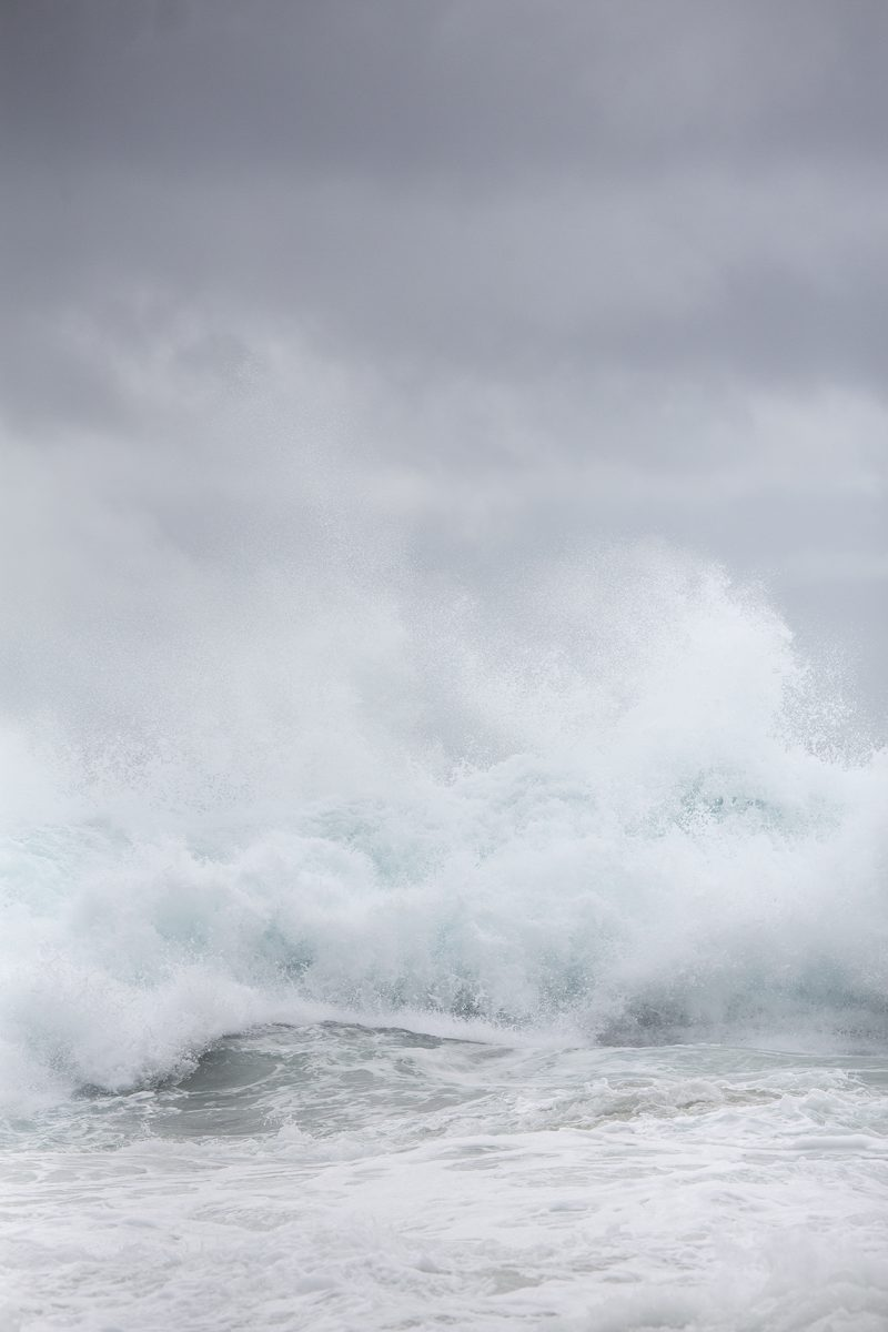 Reverent C Shell Bankier Bluesphere Ocean Art Photography