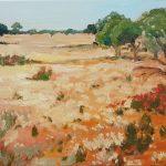 Mullewa Meadow