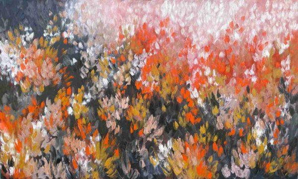 Belinda Nadwie Art Australian Artist Fields Of Gold S2 Main Og Bn