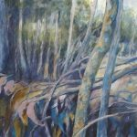 Fallen Branches – Mount Coot Tha Series