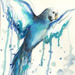 Blue Budgie, Open Wings