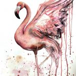 Dance of the Pink Flamingo