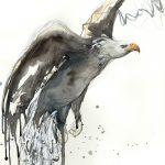 Bald Eagle, Bold Eagle