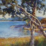 Shores of Lake Eppalock