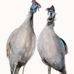 Two Guinea Fowl Ltd Ed Print